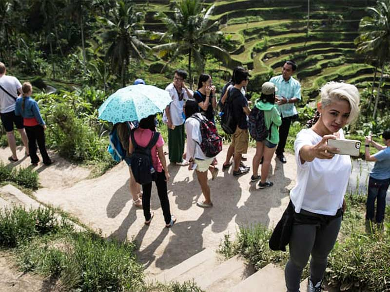 Tegallalang Rice Terraces Ubud Bali