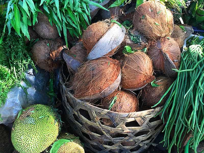 Coconuts jackfruit fruit market