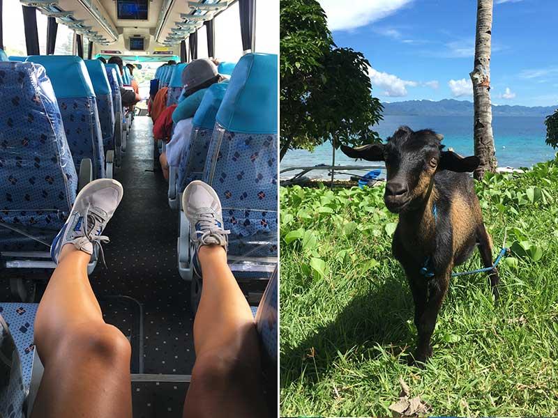 Bus to Padre Burgos