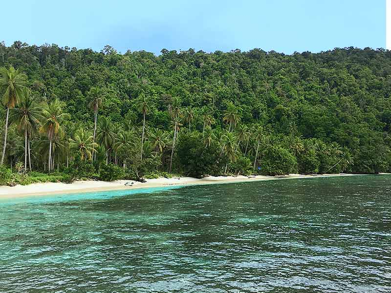 Remote islands of Raja Ampat