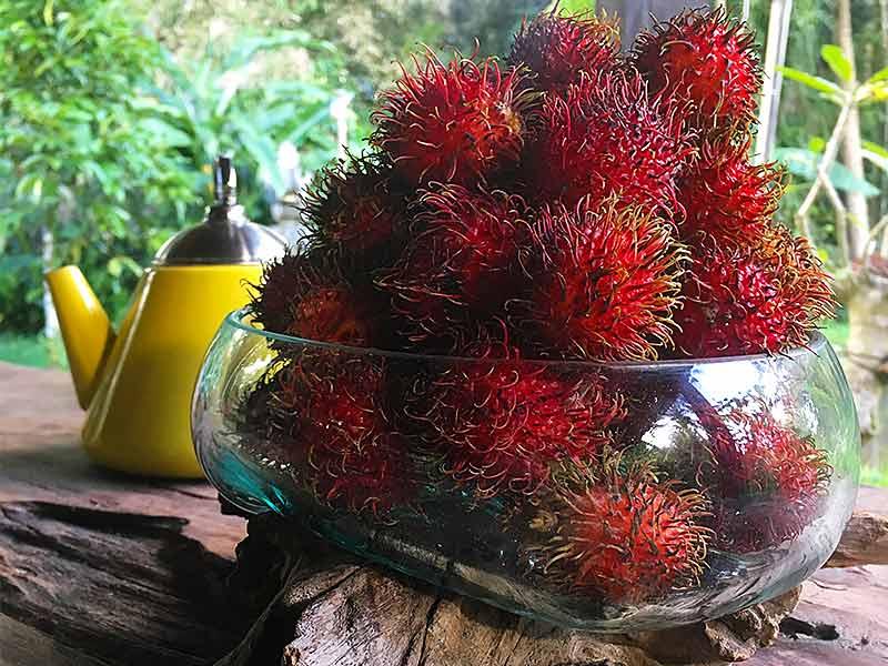 Rambutan Fruit bowl Bali