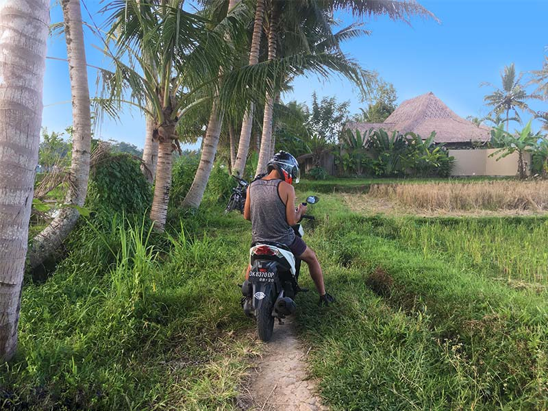 scooter in rice terrace